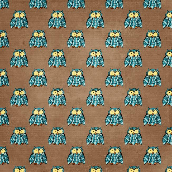 https://cesstrelle.files.wordpress.com/2015/07/hg-cu-blueowls.jpg?w=652&h=652